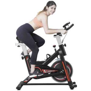 buy spin bike online